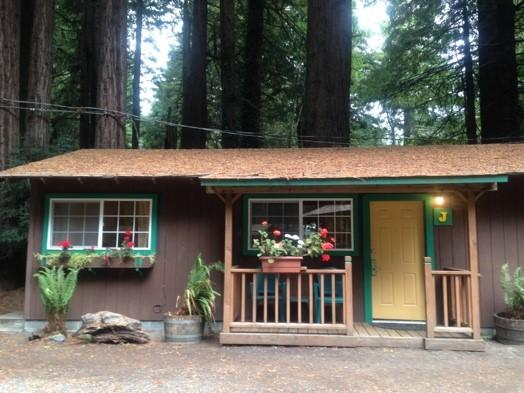 Forest cottage in the Redwoods